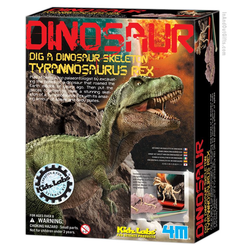 T-rex dinosaur skeleton fossil replica excavation dig kit in a frame nothing but dinosaurs